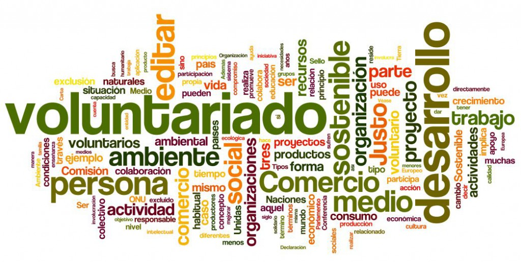 Word-cloud voluntariado ambiental